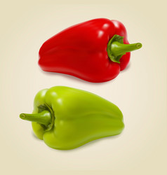 set of sweet peppers vector image