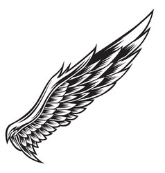 wings bird black white 012 vector image