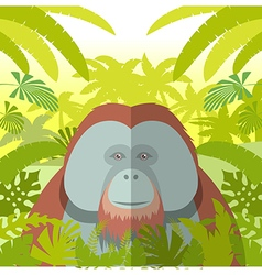 Orangutan on the Jungle Background vector image vector image