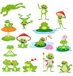 cartoon funny frog collection set vector image