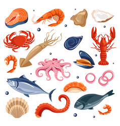 Seafood menu fish and shrimp lobster and squid vector