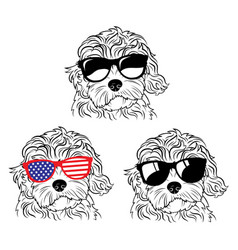 Set portraits dogs in glasses a collection vector