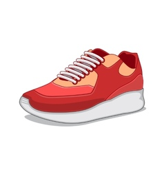Sneakers isolated on white vector image