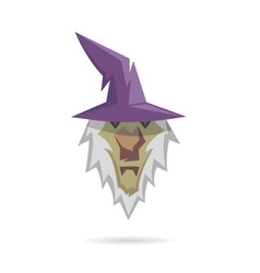 Wizard isolated on a white backgrounds vector