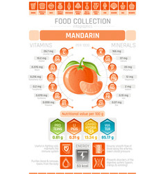 food infographics poster mandarin fruit vector image vector image