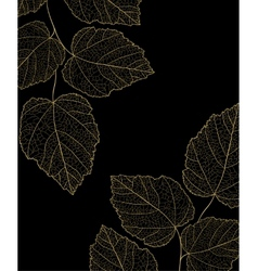 Gold ornate branch with leaf vector image