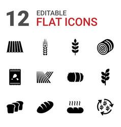 Grain icons vector