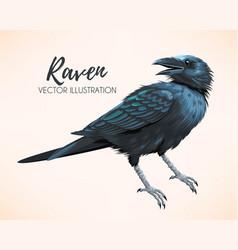 High detailed black raven vector
