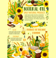 Organic vegetable oils products vector