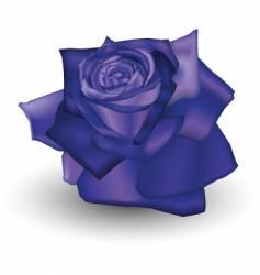indigo rose vector image vector image