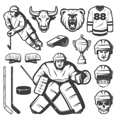 Vintage Hockey Elements Set vector image vector image