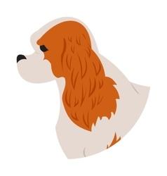 Dog head cavalier charles king spaniel vector