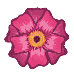 beautiful pink flower with leaves vector image