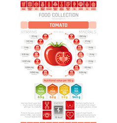 Food infographics poster tomato vegetable vector