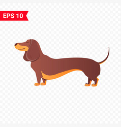 Happy dachshund flat vector