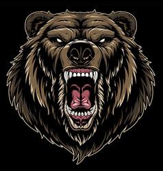 head a ferocious grizzly bear vector image