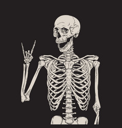 Human skeleton posing over black background vector