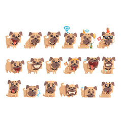 Little pet pug dog puppy with collar set of emoji vector