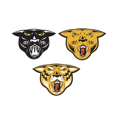 Panther Big Cat Growl Head Isolated vector image