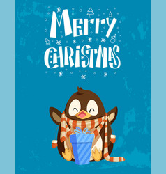 penguin in scarf with gift box christmas card vector image