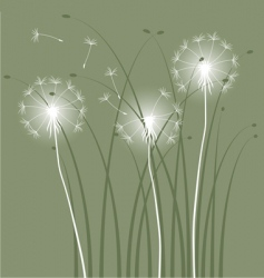 abstract background with dandelions vector image vector image