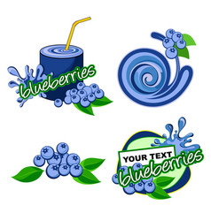 icon blueberries fruit vector image