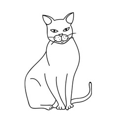 chartreux icon in outline style isolated on white vector image vector image