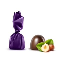 Dark Chocolate Candies with Hazelnuts in Foil vector image