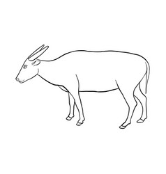 drawing buffalo vector image