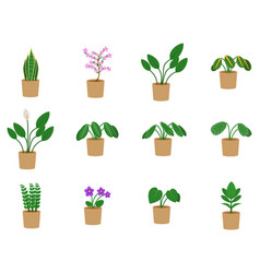 Houseplants icon set potted plants and flowers in vector