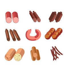 Sausages sorts meat gastronomy or butcher shop vector