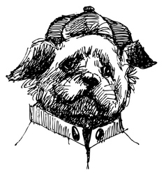 Shih Tzu head vector