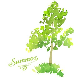 Young tree painted in watercolor vector