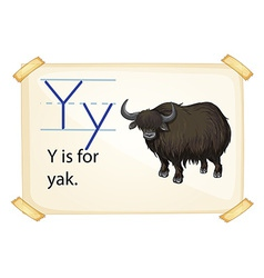 A letter Y for yak vector
