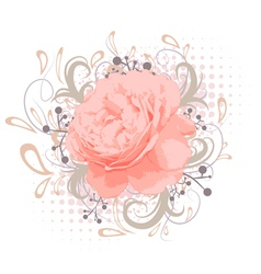 Abstract Peony Flower vector image