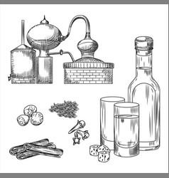 Set ouzo greek alcohol on white background glass vector