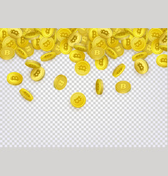 bitcoin banner flyer template with golden coins vector image