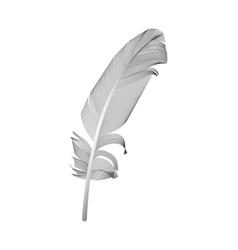 Black Bird Feather Drawn in White Background vector