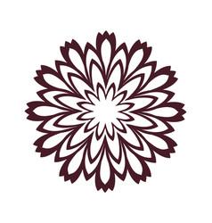 Brown pattern flower mandala vector