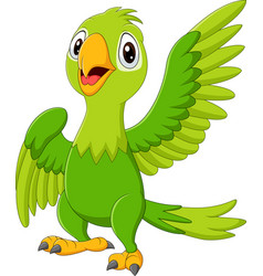 cartoon happy parrot isolated on white background vector image