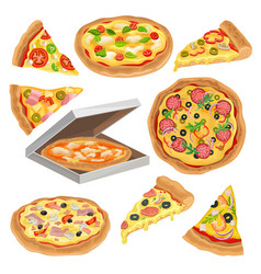 flat set of round pizza triangle slice and vector image