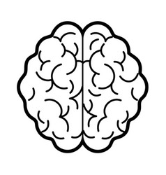 isolated brain design vector image