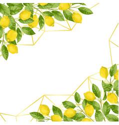 luxury lemon brunches background vector image