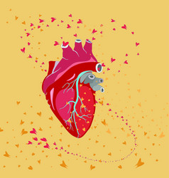 red heart and blood butterflies vector image