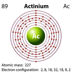 Diagram representation of the element actinium vector image vector image