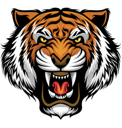 angry tiger face vector image vector image