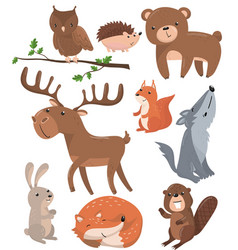 forest animals set woodland cute animal owl bird vector image