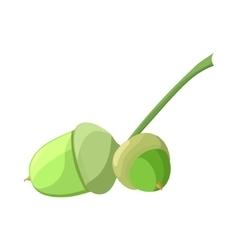 Acorn in cartoon style vector image
