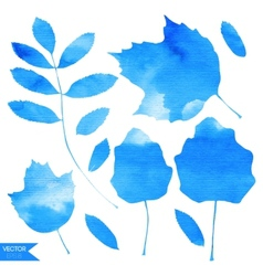 Aquamarine Blue Watercolor Leaves vector