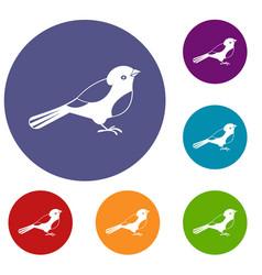 Bird icons set vector